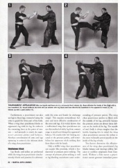 Wing Chun Applications